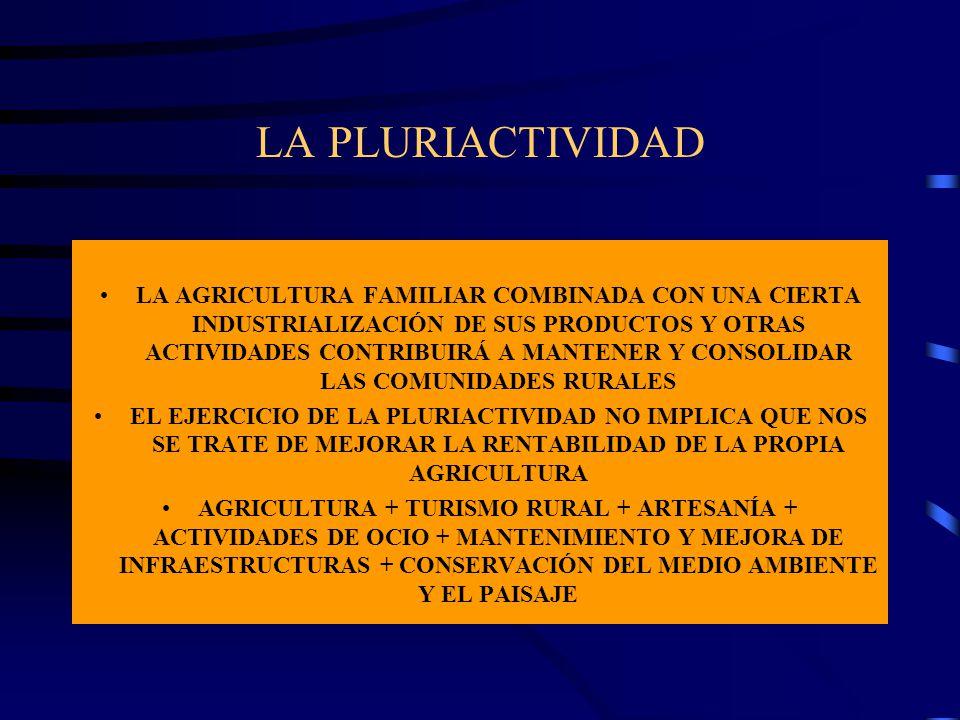 LA PLURIACTIVIDAD LA AGRICULTURA FAMILIAR COMBINADA CON UNA CIERTA INDUSTRIALIZACIÓN DE SUS PRODUCTOS Y OTRAS ACTIVIDADES CONTRIBUIRÁ A MANTENER Y CON