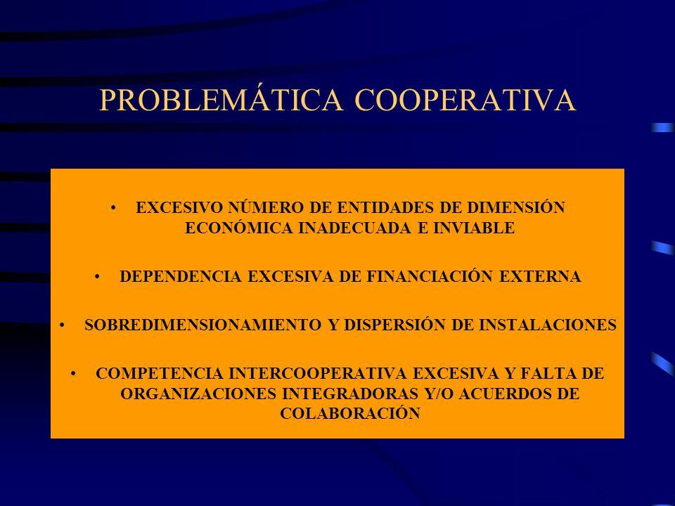 PROBLEMÁTICA COOPERATIVA EXCESIVO NÚMERO DE ENTIDADES DE DIMENSIÓN ECONÓMICA INADECUADA E INVIABLE DEPENDENCIA EXCESIVA DE FINANCIACIÓN EXTERNA SOBRED