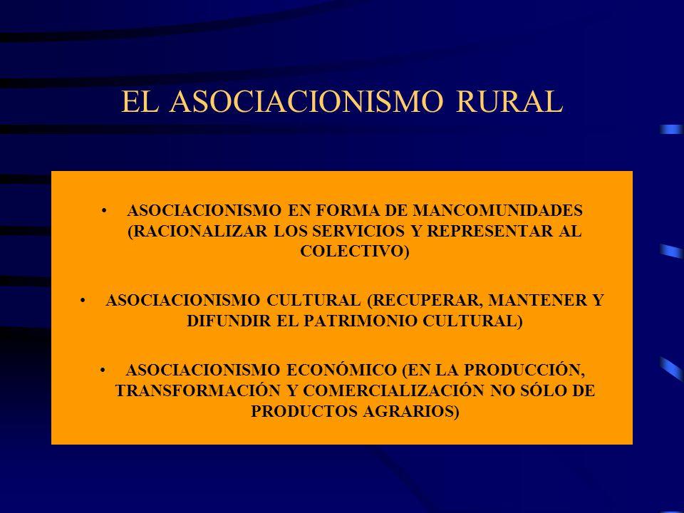 EL ASOCIACIONISMO RURAL ASOCIACIONISMO EN FORMA DE MANCOMUNIDADES (RACIONALIZAR LOS SERVICIOS Y REPRESENTAR AL COLECTIVO) ASOCIACIONISMO CULTURAL (REC