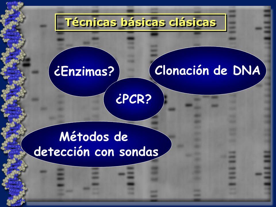 ¿Enzimas? Clonación de DNA Métodos de detección con sondas Técnicas básicas clásicas ¿PCR?