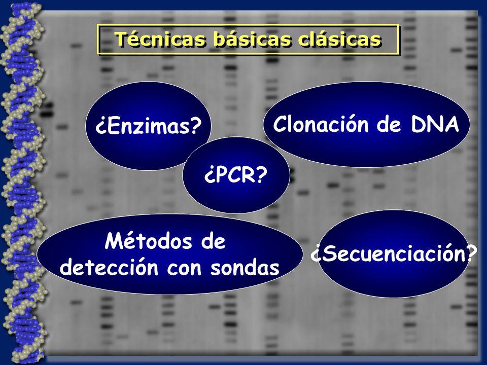 ¿Enzimas? Clonación de DNA Métodos de detección con sondas ¿Secuenciación? Técnicas básicas clásicas ¿PCR?