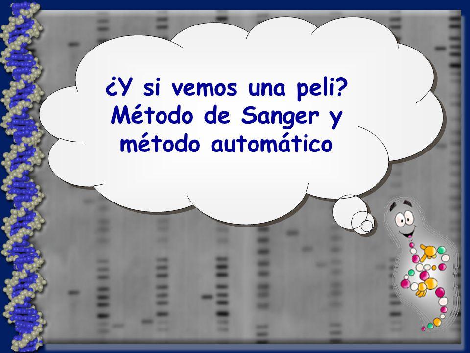 ¿Y si vemos una peli? Método de Sanger y método automático ¿Y si vemos una peli? Método de Sanger y método automático