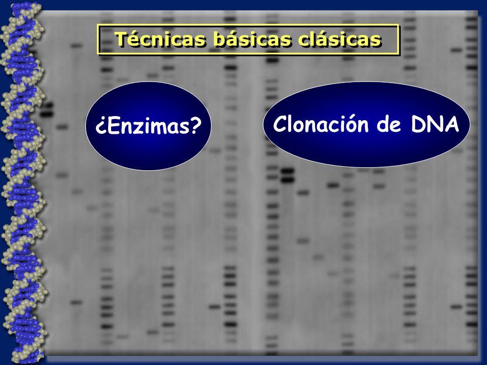 ¿Y respecto a la manipulación del genoma?