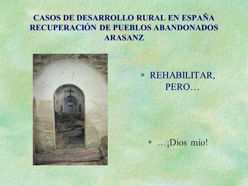 CASOS DE DESARROLLO RURAL EN ESPAÑA RECUPERACIÓN DE PUEBLOS ABANDONADOS ARASANZ §REHABILITAR, PERO… §…¡Dios mío!