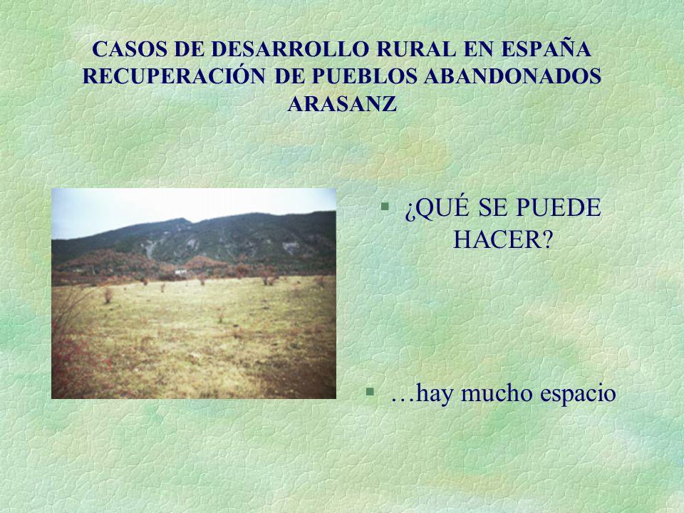 CASOS DE DESARROLLO RURAL EN ESPAÑA RECUPERACIÓN DE PUEBLOS ABANDONADOS ARASANZ §¿QUÉ SE PUEDE HACER? §…hay mucho espacio