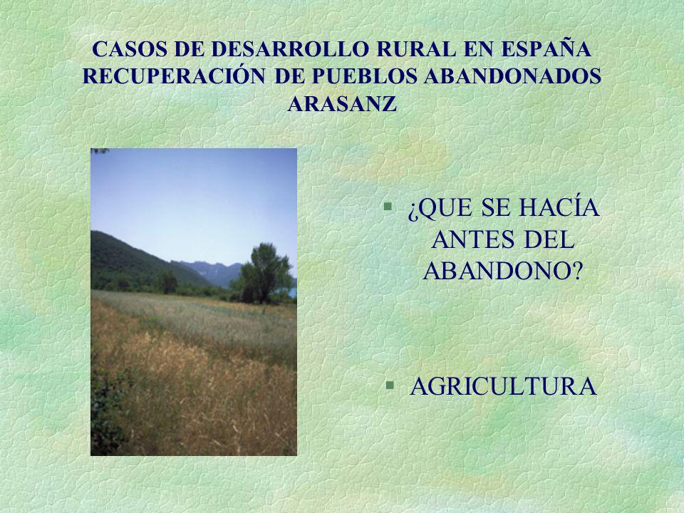 CASOS DE DESARROLLO RURAL EN ESPAÑA RECUPERACIÓN DE PUEBLOS ABANDONADOS ARASANZ §¿QUE SE HACÍA ANTES DEL ABANDONO? §AGRICULTURA