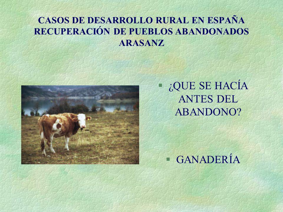 CASOS DE DESARROLLO RURAL EN ESPAÑA RECUPERACIÓN DE PUEBLOS ABANDONADOS ARASANZ §¿QUE SE HACÍA ANTES DEL ABANDONO.