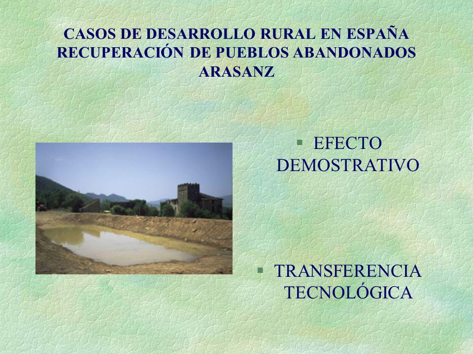 CASOS DE DESARROLLO RURAL EN ESPAÑA RECUPERACIÓN DE PUEBLOS ABANDONADOS ARASANZ §EFECTO DEMOSTRATIVO §TRANSFERENCIA TECNOLÓGICA