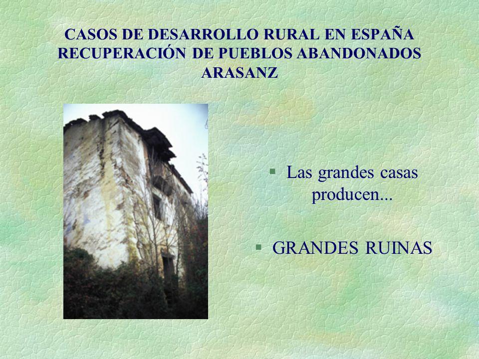 CASOS DE DESARROLLO RURAL EN ESPAÑA RECUPERACIÓN DE PUEBLOS ABANDONADOS ARASANZ §Las grandes casas producen... §GRANDES RUINAS