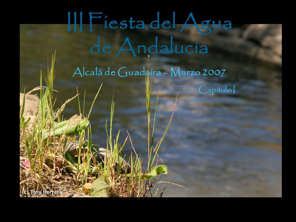 III Fiesta del Agua de Andalucía Alcalá de Guadaíra – Marzo 2007 Capítulo I