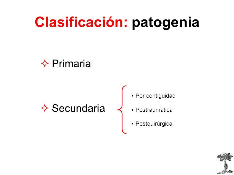 Clasificación: patogenia Primaria Secundaria Por contigüidad Postraumática Postquirúrgica