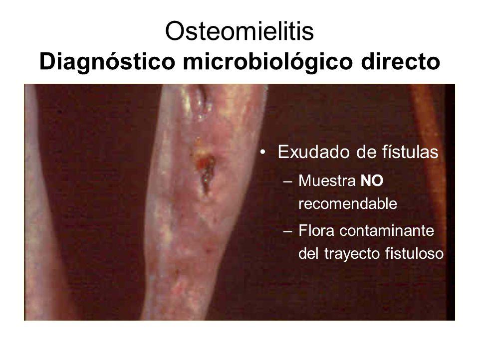 Osteomielitis Diagnóstico microbiológico directo Exudado de fístulas –Muestra NO recomendable –Flora contaminante del trayecto fistuloso