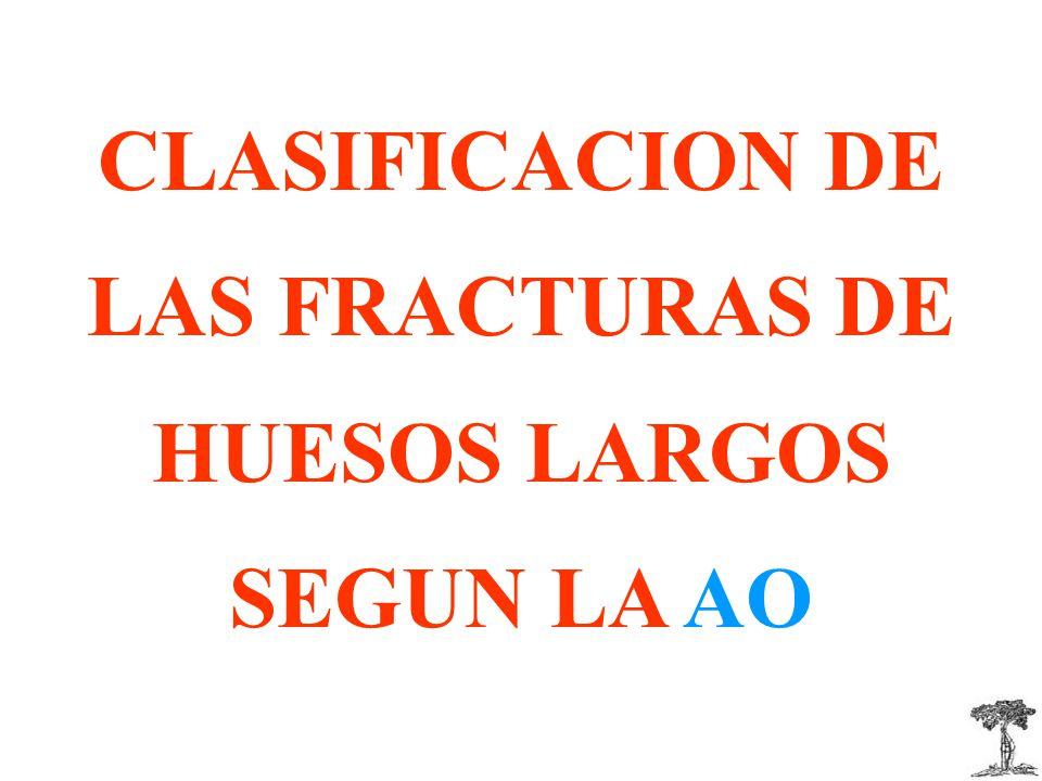 CLASIFICACION DE LAS FRACTURAS DE HUESOS LARGOS SEGUN LA AO