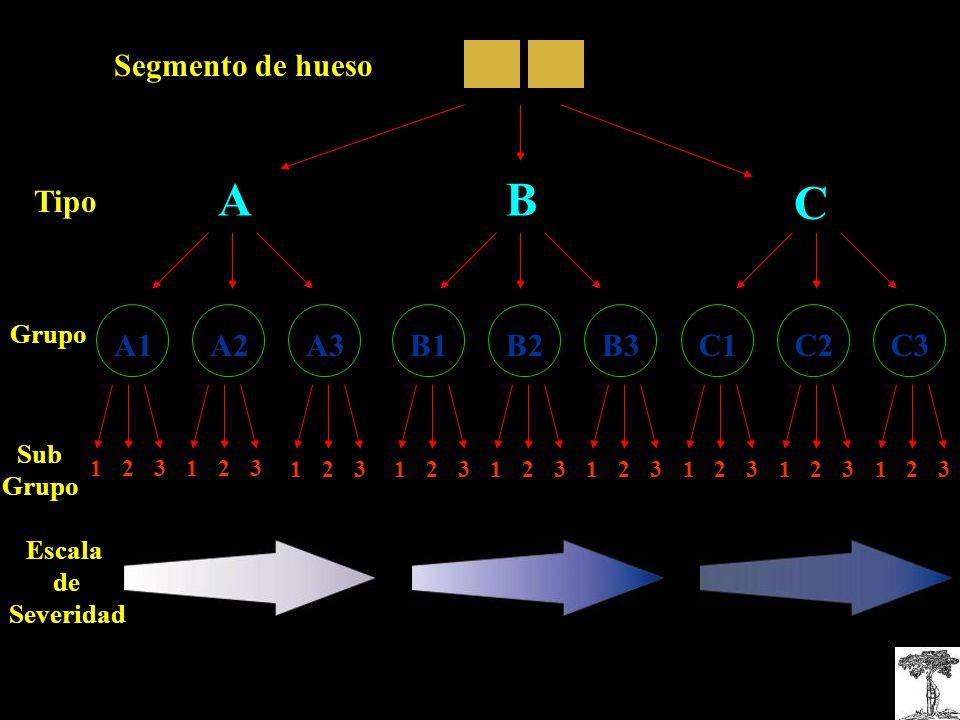 Segmento de hueso Tipo Grupo Sub Grupo Escala de Severidad A1A2A3C1C3C2B3B1B2 1 2 31 2 3 1 2 31 2 31 2 31 2 31 2 31 2 31 2 3 AB C
