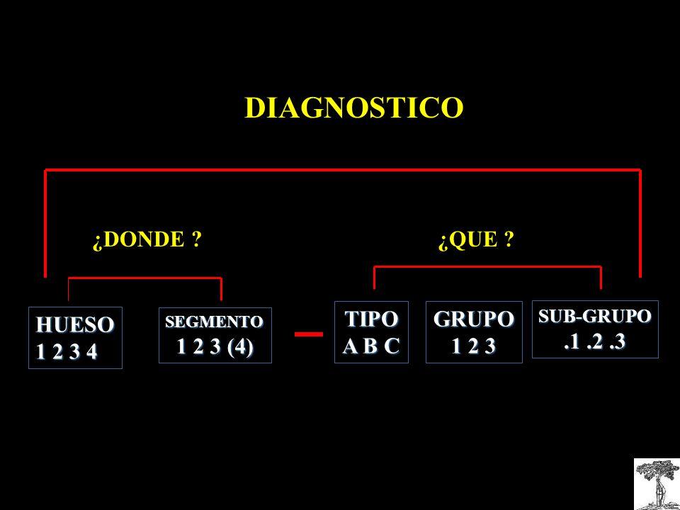 DIAGNOSTICO ¿DONDE ? SEGMENTO 1 2 3 (4) HUESO 1 2 3 4 ¿QUE ? TIPO A B C GRUPO 1 2 3 SUB-GRUPO.1.2.3