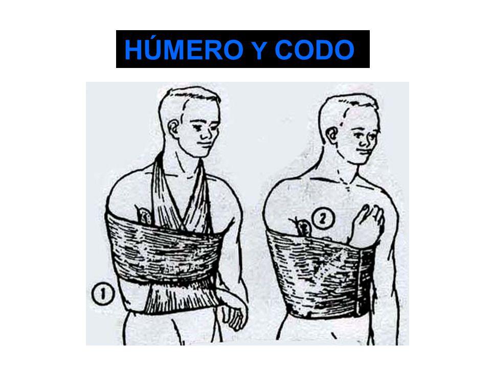 HÚMERO Y CODO