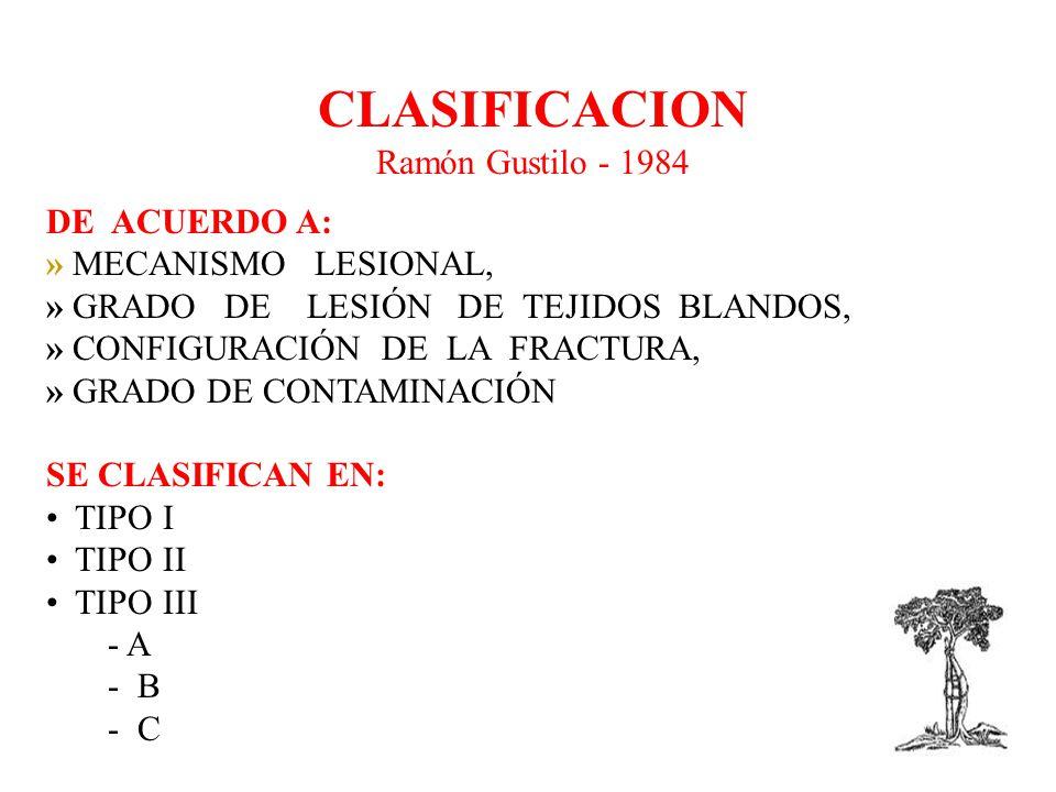 CLASIFICACION Ramón Gustilo - 1984 DE ACUERDO A: » MECANISMO LESIONAL, » GRADO DE LESIÓN DE TEJIDOS BLANDOS, » CONFIGURACIÓN DE LA FRACTURA, » GRADO DE CONTAMINACIÓN SE CLASIFICAN EN: TIPO I TIPO II TIPO III - A - B - C