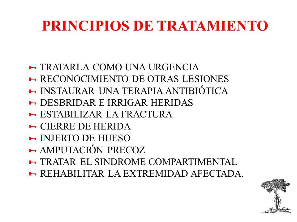 PRINCIPIOS DE TRATAMIENTO TRATARLA COMO UNA URGENCIA RECONOCIMIENTO DE OTRAS LESIONES INSTAURAR UNA TERAPIA ANTIBIÓTICA DESBRIDAR E IRRIGAR HERIDAS ESTABILIZAR LA FRACTURA CIERRE DE HERIDA INJERTO DE HUESO AMPUTACIÓN PRECOZ TRATAR EL SINDROME COMPARTIMENTAL REHABILITAR LA EXTREMIDAD AFECTADA.