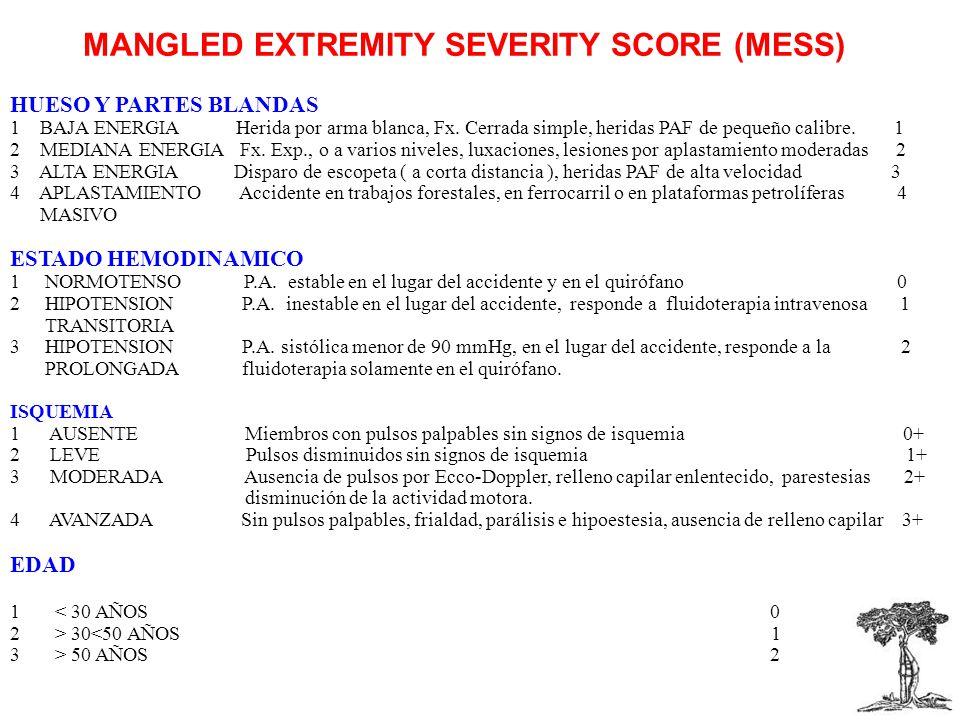 MANGLED EXTREMITY SEVERITY SCORE (MESS) HUESO Y PARTES BLANDAS 1 BAJA ENERGIA Herida por arma blanca, Fx.