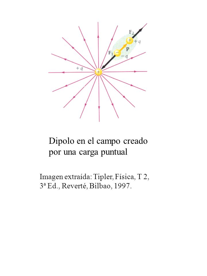 Dipolo en el campo creado por una carga puntual Imagen extraída: Tipler, Física, T 2, 3ª Ed., Reverté, Bilbao, 1997.