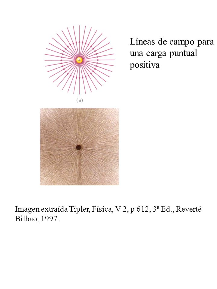 Líneas de campo para una carga puntual positiva Imagen extraída Tipler, Física, V 2, p 612, 3ª Ed., Reverté Bilbao, 1997.