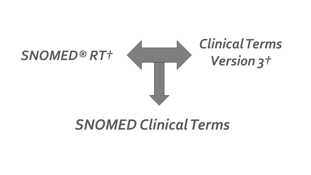 SNOMED® RT Clinical Terms Version 3 SNOMED Clinical Terms