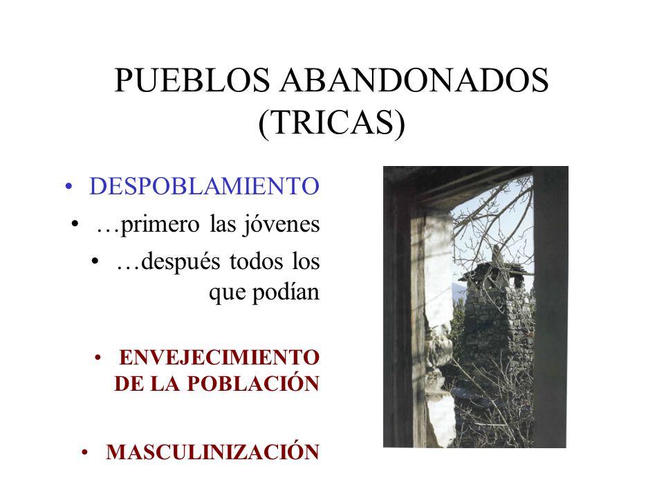 PUEBLOS ABANDONADOS (TRICAS) DESPOBLAMIENTO …primero las jóvenes …después todos los que podían ENVEJECIMIENTO DE LA POBLACIÓN MASCULINIZACIÓN