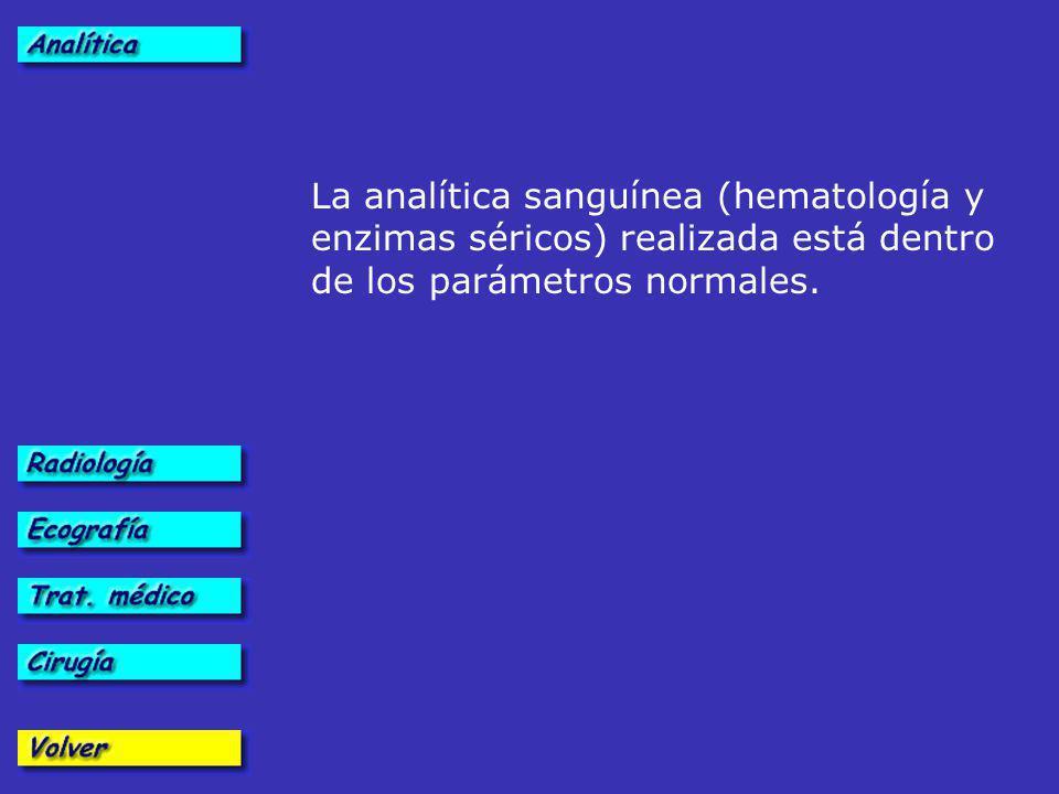 La analítica sanguínea (hematología y enzimas séricos) realizada está dentro de los parámetros normales.