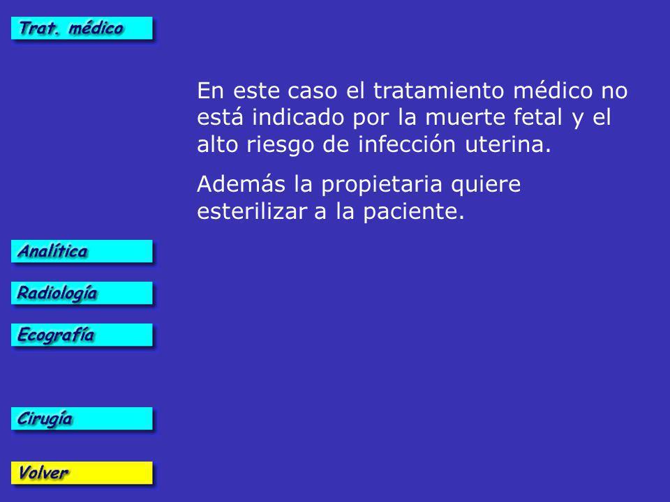 En este caso el tratamiento médico no está indicado por la muerte fetal y el alto riesgo de infección uterina.