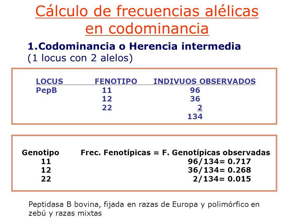Cálculo de frecuencias alélicas en codominancia GenotipoFrec.