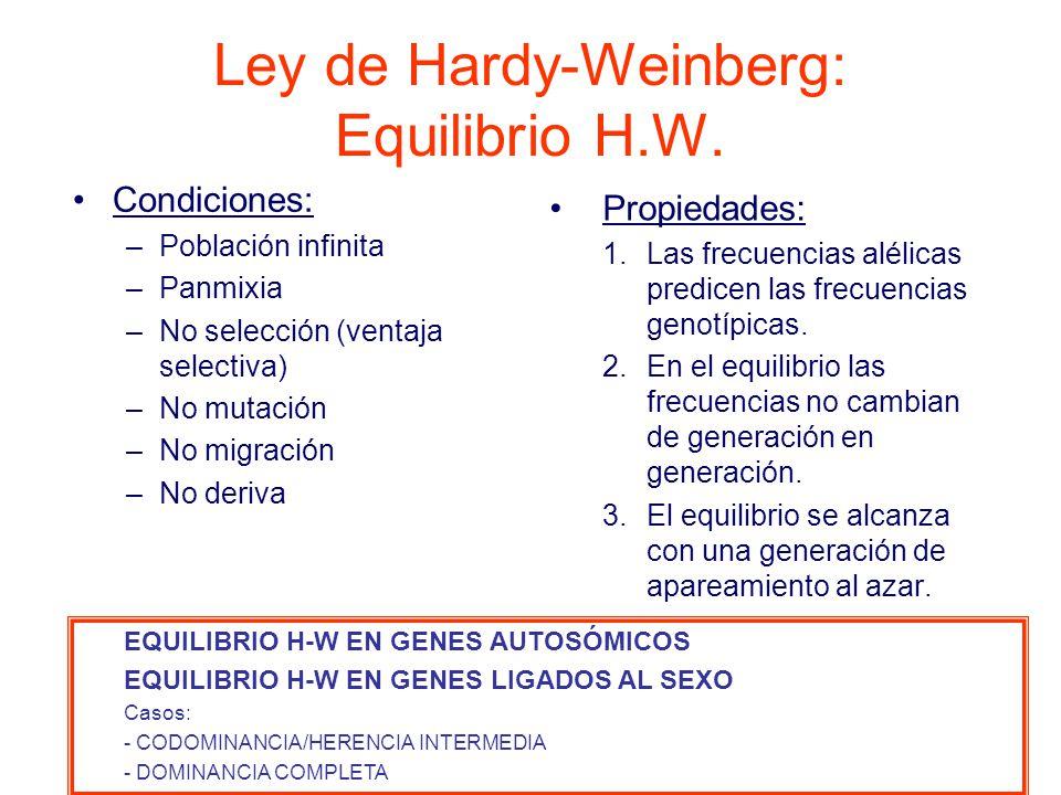 Ley de Hardy-Weinberg: Equilibrio H.W.