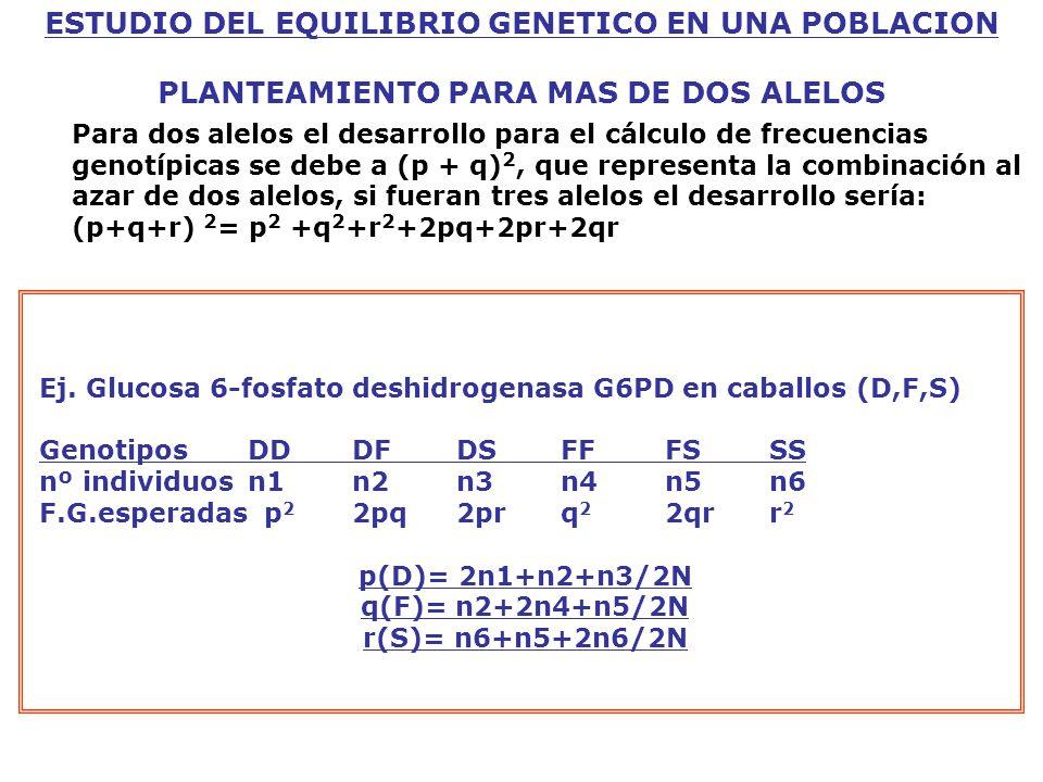 ESTUDIO DEL EQUILIBRIO GENETICO EN UNA POBLACION PLANTEAMIENTO PARA MAS DE DOS ALELOS Ej.