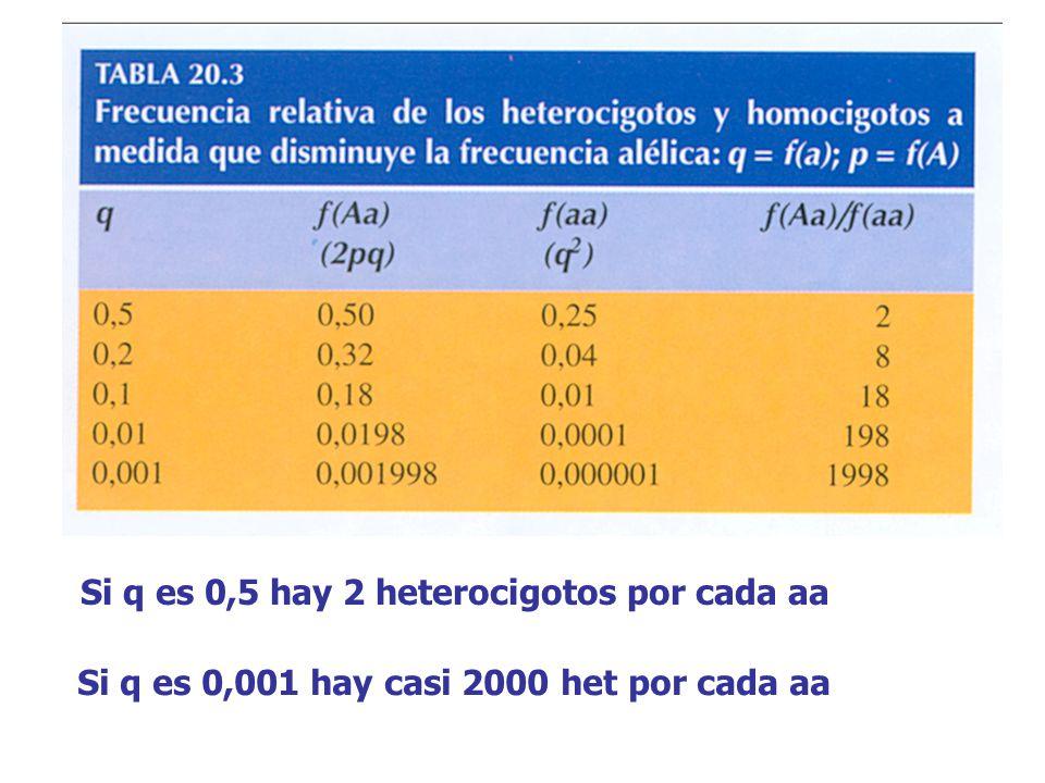 Si q es 0,5 hay 2 heterocigotos por cada aa Si q es 0,001 hay casi 2000 het por cada aa