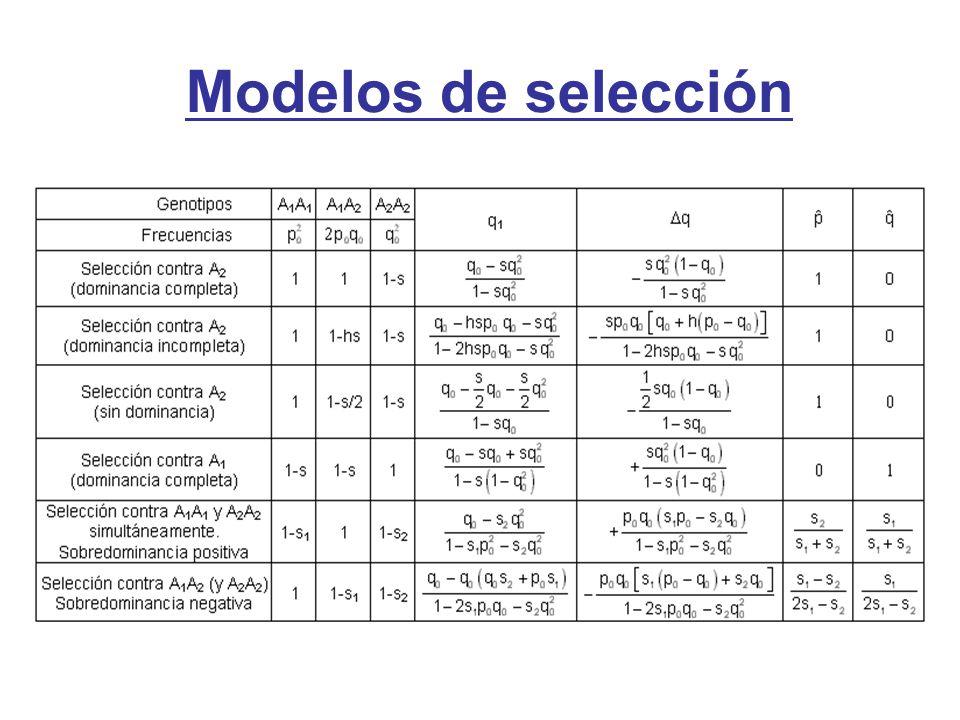 Modelos de selección