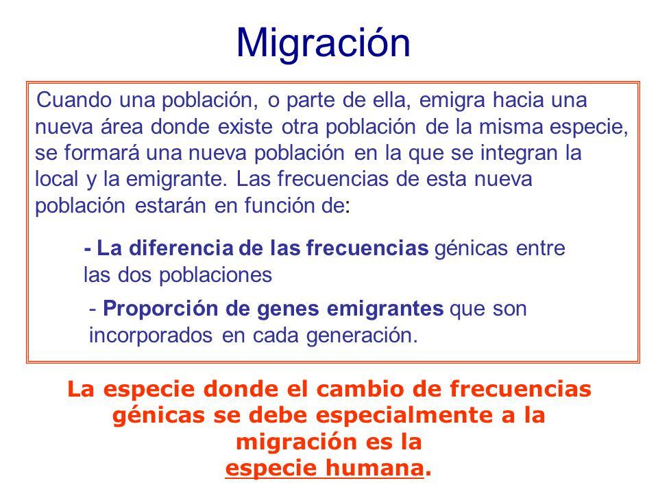 Cuando una población, o parte de ella, emigra hacia una nueva área donde existe otra población de la misma especie, se formará una nueva población en la que se integran la local y la emigrante.