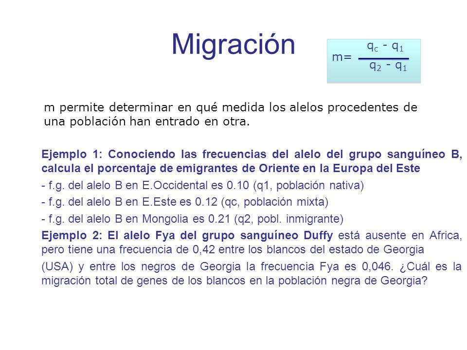 Migración Ejemplo 1: Conociendo las frecuencias del alelo del grupo sanguíneo B, calcula el porcentaje de emigrantes de Oriente en la Europa del Este - f.g.