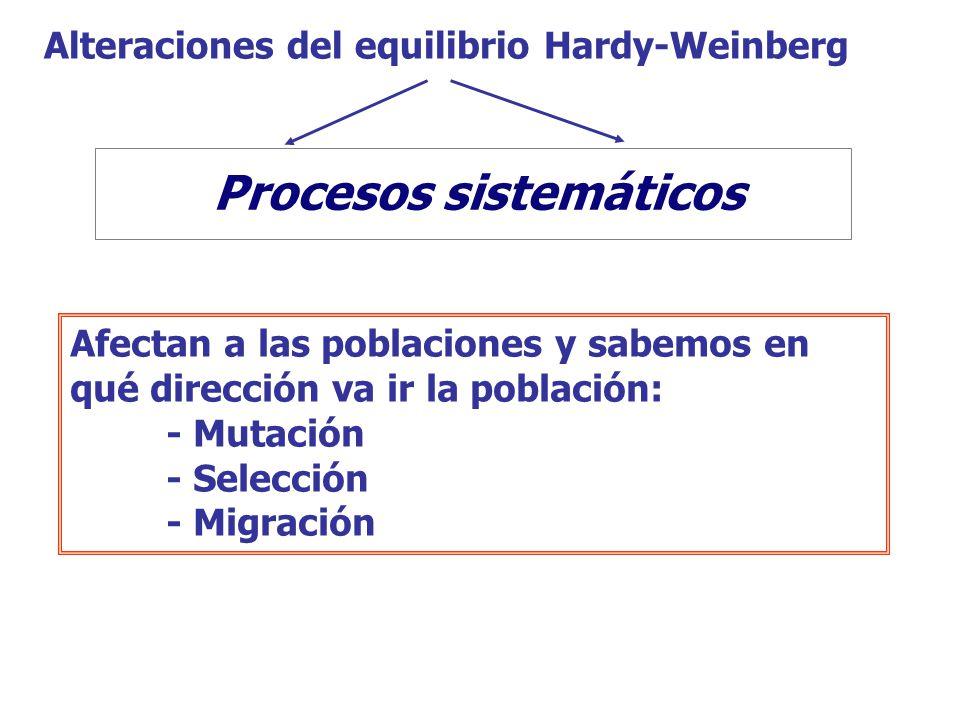 Afectan a las poblaciones y sabemos en qué dirección va ir la población: - Mutación - Selección - Migración Procesos sistemáticos Procesos dispersivos Alteraciones del equilibrio Hardy-Weinberg Procesos sistemáticos