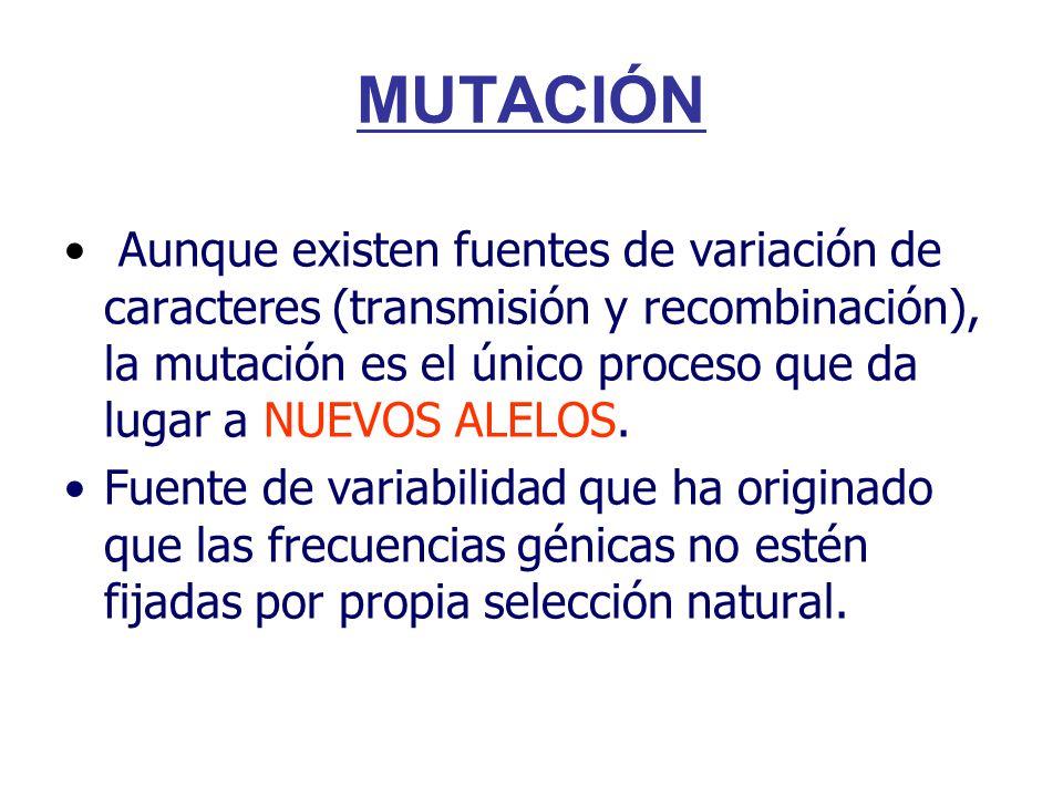 Aunque existen fuentes de variación de caracteres (transmisión y recombinación), la mutación es el único proceso que da lugar a NUEVOS ALELOS.