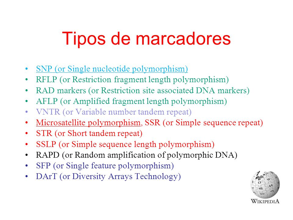 Tipos de marcadores SNP (or Single nucleotide polymorphism) RFLP (or Restriction fragment length polymorphism) RAD markers (or Restriction site associ