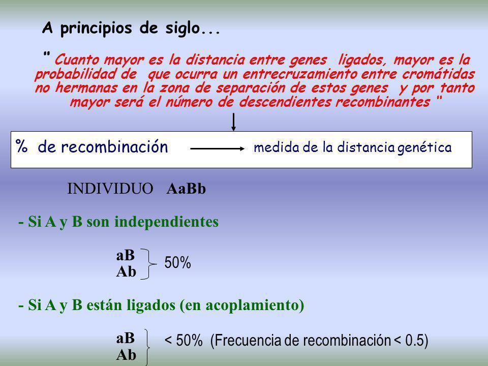 CALCULO FRECUENCIA DE RECOMBINACIÓN