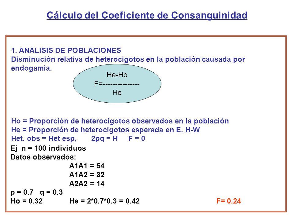Cálculo del Coeficiente de Consanguinidad 1.