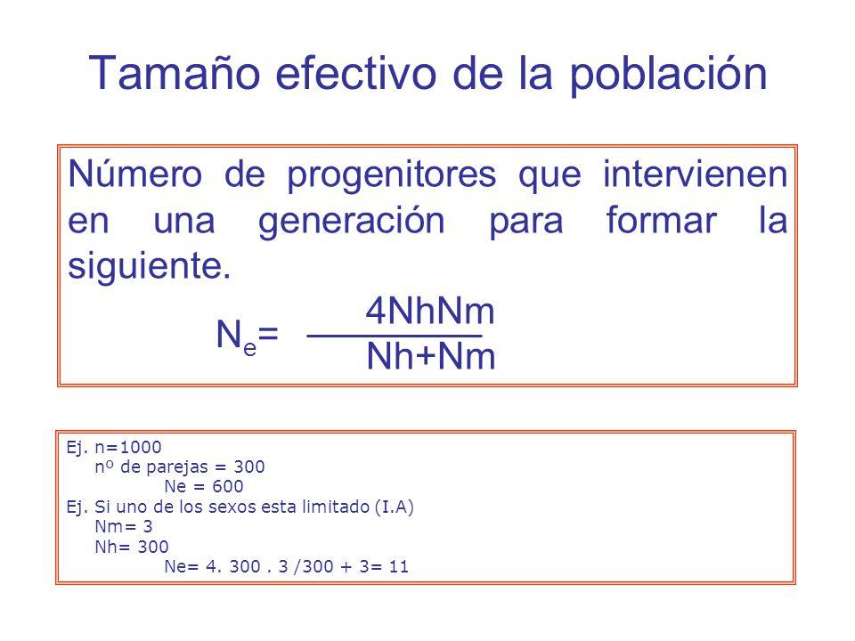 Número de progenitores que intervienen en una generación para formar la siguiente.
