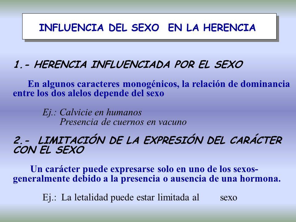 INFLUENCIA DEL SEXO EN LA HERENCIA 1.- HERENCIA INFLUENCIADA POR EL SEXO En algunos caracteres monogénicos, la relación de dominancia entre los dos alelos depende del sexo Ej.: Calvicie en humanos Presencia de cuernos en vacuno 2.- LIMITACIÓN DE LA EXPRESIÓN DEL CARÁCTER CON EL SEXO Un carácter puede expresarse solo en uno de los sexos- generalmente debido a la presencia o ausencia de una hormona.