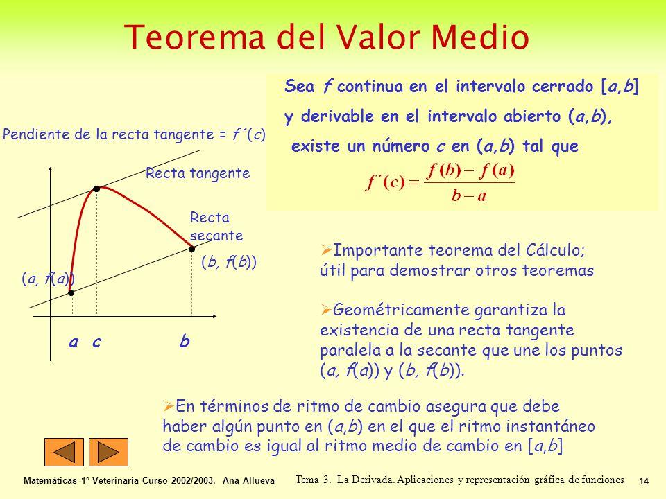 Teorema del Valor Medio Matemáticas 1º Veterinaria Curso 2002/2003. Ana Allueva 14 Tema 3. La Derivada. Aplicaciones y representación gráfica de funci