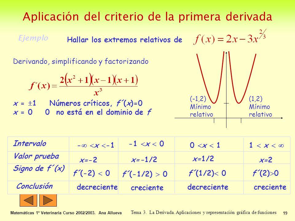 Aplicación del criterio de la primera derivada Matemáticas 1º Veterinaria Curso 2002/2003. Ana Allueva 19 Tema 3. La Derivada. Aplicaciones y represen