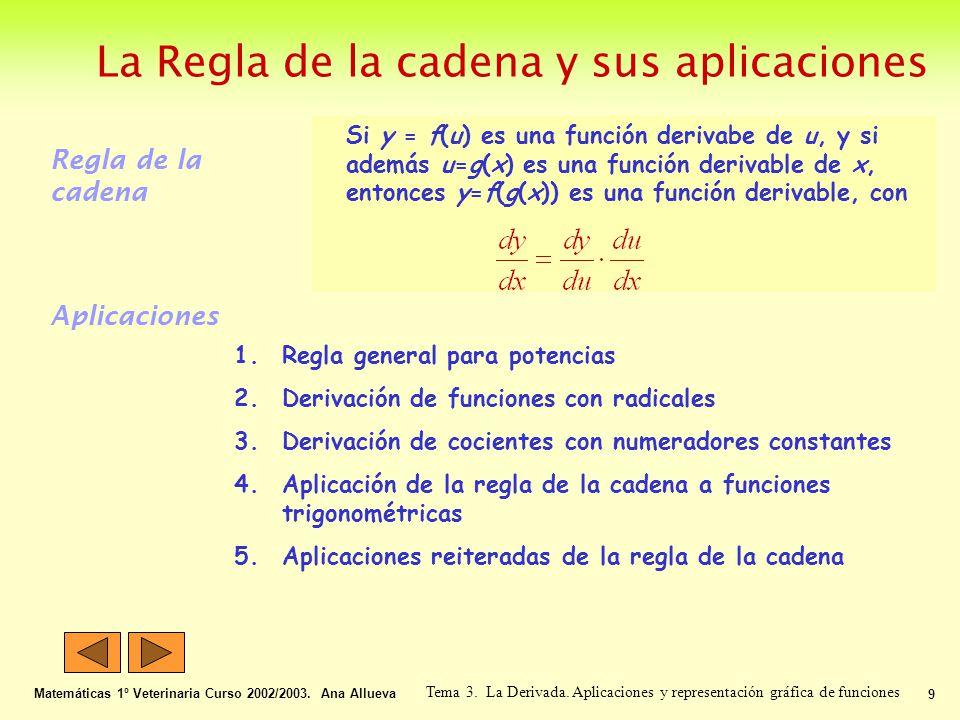La Regla de la cadena y sus aplicaciones Matemáticas 1º Veterinaria Curso 2002/2003. Ana Allueva 9 Tema 3. La Derivada. Aplicaciones y representación