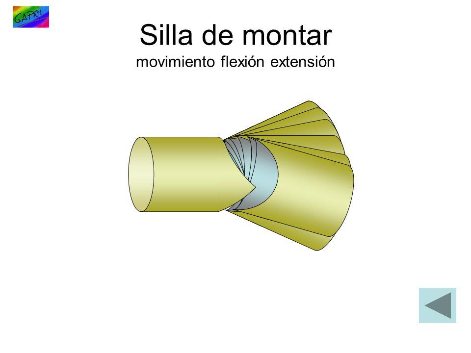 Silla de montar movimiento flexión extensión