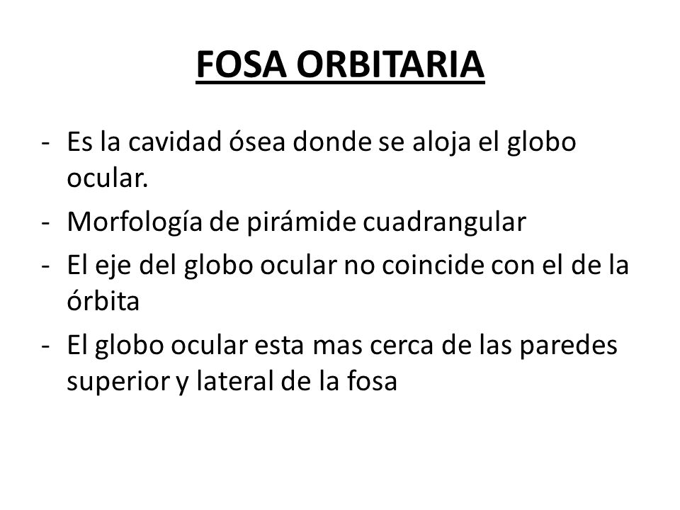 FOSA ORBITARIA -Es la cavidad ósea donde se aloja el globo ocular. -Morfología de pirámide cuadrangular -El eje del globo ocular no coincide con el de