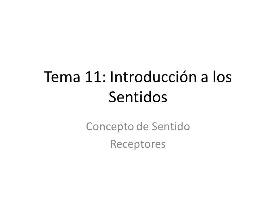 Tema 11: Introducción a los Sentidos Concepto de Sentido Receptores