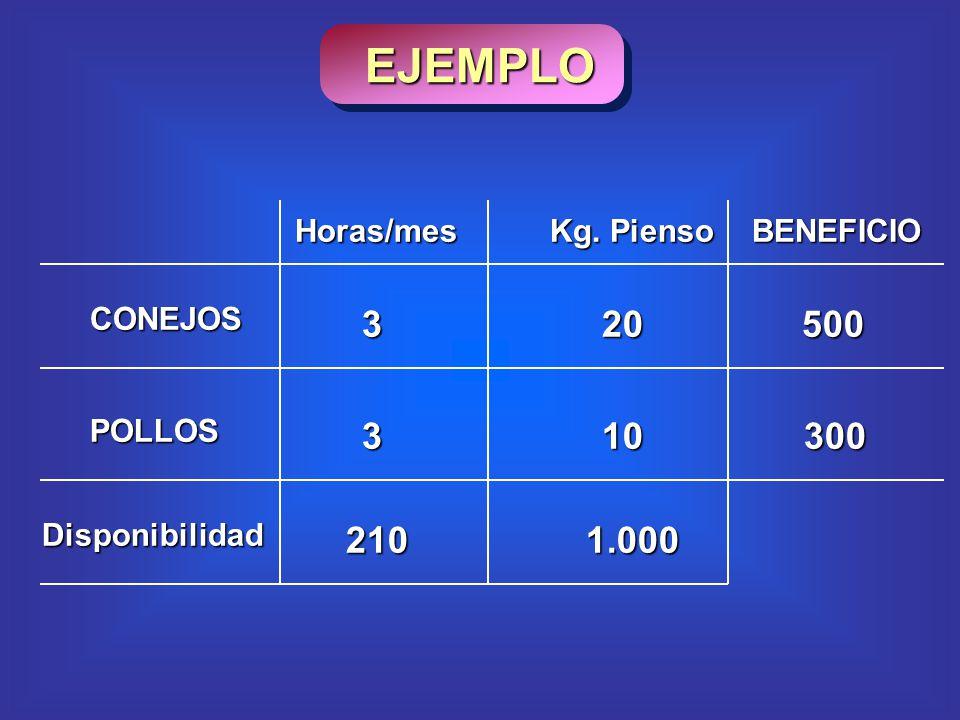 CONEJOS POLLOS 210Disponibilidad1.000 20 10 BENEFICIO 500 300 3 3 Kg. Pienso Horas/mes EJEMPLO
